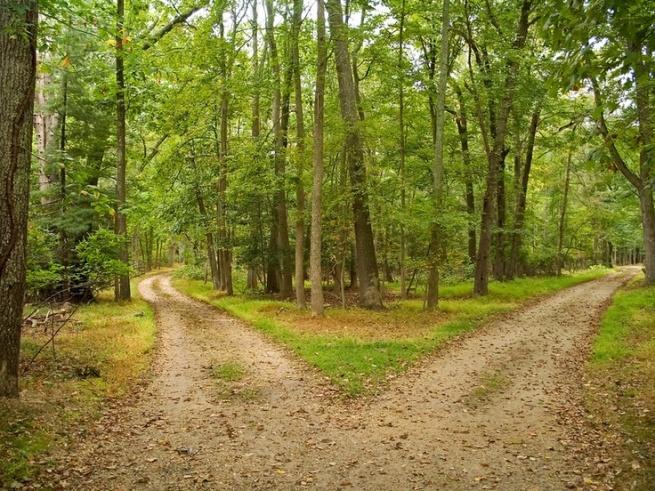 path diverging